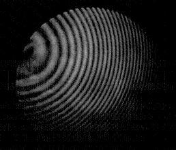 84 30 Michelson Interferometer
